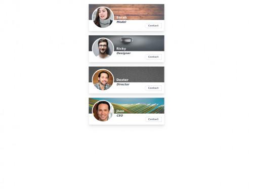 tailwind user profile cards
