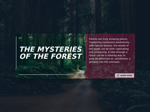 tailwind Info Card - Forest